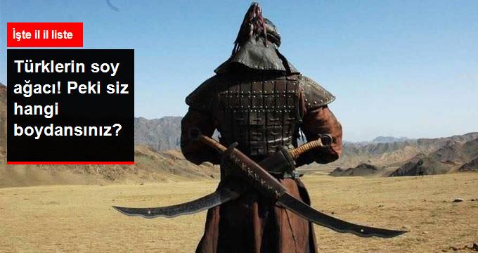 Türklerin Soy Ağacı -  Peki Siz Hangi Soydansınız?